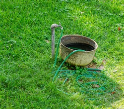Faucet, tub and garden hose on lawn