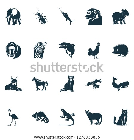 Fauna icons set with eagle, hedgehog, flamingo and other coon elements. Isolated  illustration fauna icons.