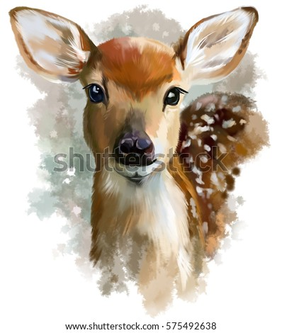 Fawn watercolor painting