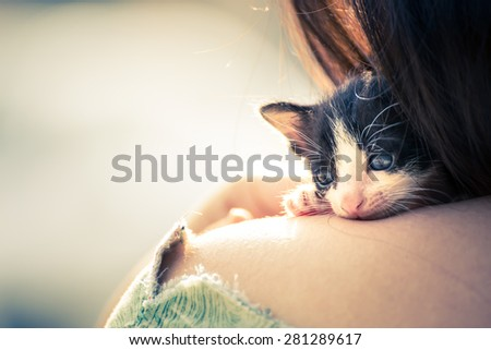 Fearful kitten was comforting by a woman on her shoulder, Vintage Style, Soft & Dreamy Effect, Low Clarity
