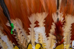 Feather headdress used by traditional dances and festivals in Papua New Guinea