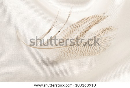 feather on light fabric