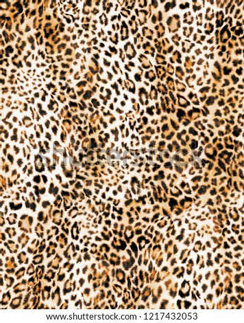 feathered leopard pattern on white background