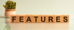 Features - word on wooden cubes and flower in a pot. Financial concept. Front view.