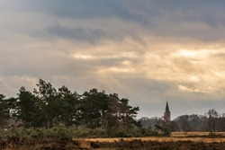 February heath landscape with a view on the medieval church of Rolde as seen from the Balloërveld. The pine trees on the left are logged by a wood harvester - Aa en Hunze, Netherlands.