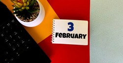 February 3 on a multicolored background on a white notebook.Next to it is an artificial flower in a pot .Calendar for February.