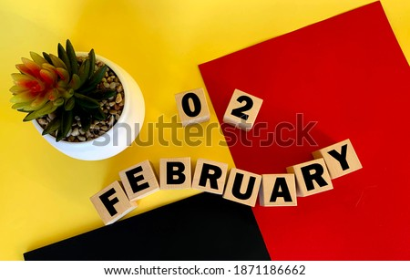 Photo of  February 2 on wooden cubes .Next to it is a pot with a cactus on a multicolored background.Calendar for February .