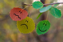 Feedback concept on autumn leaves green, yellow & red. Giving feedback rating & review happy, neutral or sad bad face leaf icons. Customer survey. Nature abstract feedback business question concept