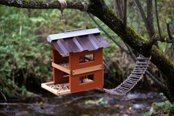 Feeder for animals and birds on a tree in the forest. Feeder with two floors and a suspension bridge.