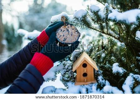 Feeding birds in winter. Woman with bird food. Bird feeders.