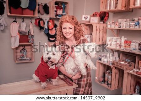 Feeling extremely happy. Red-haired curly woman feeling extremely happy spending time with dogs