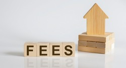 FEES Wooden Blocks With A Miniature House on white background