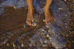 feet in seawater with shells and sand