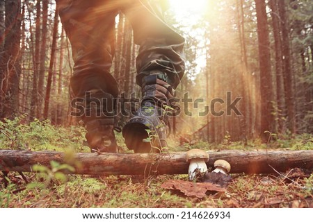 feet in shoes autumn forest hike Stockfoto ©