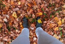 Feet in the autumn leaves covering entire image. Very colrful leaves. Shooting date - 10/11/2020. Location - Limbazi, Limbazu novads, Latvia.