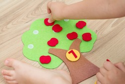 Felt apple tree with numbers. Preschool implement to help for children to learn counting. Montessori concept, early education. Kids hand on toy.