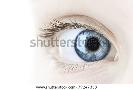 Female blue eye looking at camera close up - stock photo