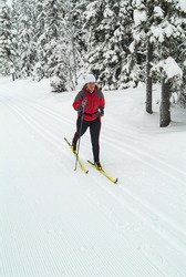 Female cross country skiier in the forest, Sweden.