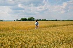 female cyclist on road bike. sport wellness. breathe deeper. Health benefits of regular cycling. young girl on bike in rye field. ranch girl on bicycle in wheat. improve your overall fitness level.