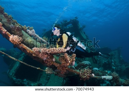 Female diver swimming over a shipwreck in the Southern Red Sea, Egypt - stock photo
