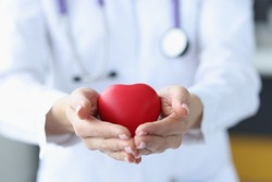 Female doctor holding red toy heart in her hands closeup. Internal organ transplant concept