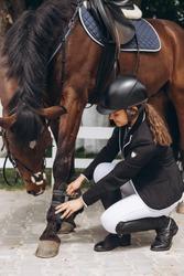 Female equestrian saddling horse. Professional woman preparing horse. Sports concept. Equestrian sport