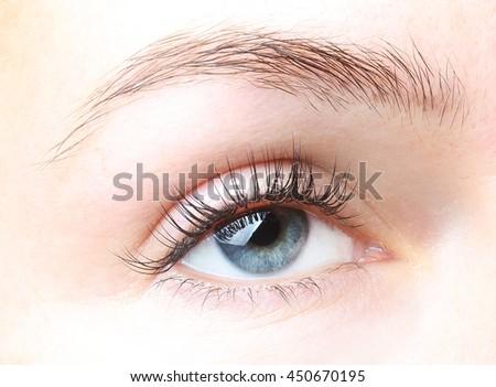 Female eye with long eyelashes without makeup close up