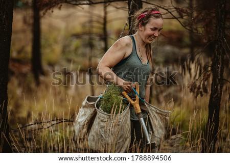 Female forest ranger planting new trees. Forester walking through dry grass carrying bag full of new seedlings and shovel. Stock photo ©