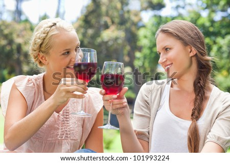 Female friends clinking their wine glasses