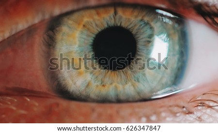 female green eye close up extreme macro,iris contracts.HD real time extreme close up shot of the wide open human eye of a female.The iris is contracting. - Shutterstock ID 626347847
