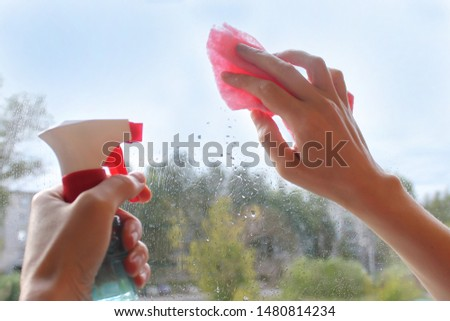 Female hand cleaning a window with a rag and spray detergent. Housekeeping concept, housekeeping concept #1480814234