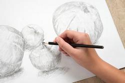 Female hand draws the Apple