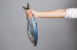 Female hand holding a big  fresh raw  fish