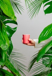 female hand holding paper cup on background with palm leaves