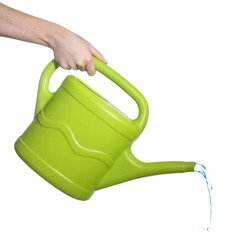 Female hand pouring from green plastic watering can, isolated on white