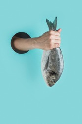 Female hand with dorado fish tail in through a hole in blue paper as color of sea. Concept capture, hook fish.