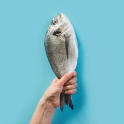 Female hand with dorado fish tail on blue paper as color of sea. Concept capture, hook fish.