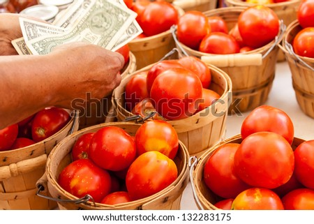 Female hands counting money over bushel baskets full of fresh organic red tomatoes at local farmers market