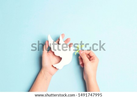 Female hands hold dove of peace with olive branch on a blue background. Top view with copy space. World Peace Day concept. #1491747995