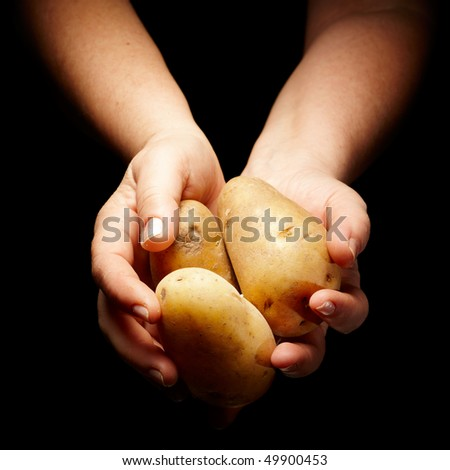 female hands holding a few potatos