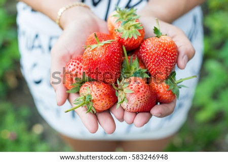 Female hands holding handful of strawberries close up #583246948