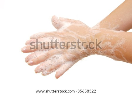 Female hands in soapsuds isolated on white