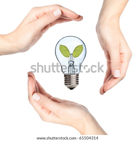 Female hands protecting a light bulb with leaves inside (recycling, environmental concept)
