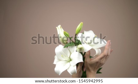female hands sensually stroking a white lily on a beige background. tenderness and sensuality. copy space