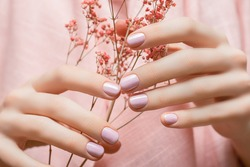 Female hands with pink nail design. Pink nail polish manicure. Woman hands hold pink flowers