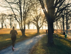 Female jogger in a park during sunset with trees and sun rays