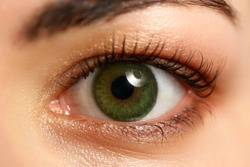 Female left emerald green coloured eye extreme closeup. Low light technique oculist and perfect vision contact lens correction beauty shadow makeup cosmetics mascara concept