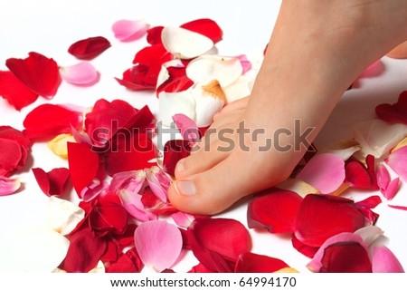 Female leg on petals