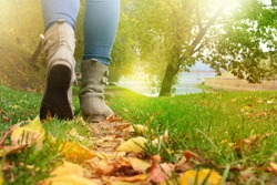 Female legs in grey shoes and jeans walking on the autumn forest path with yellow leaves