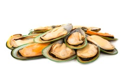 Female New Zealand greenshell mussels studio isolated on white background